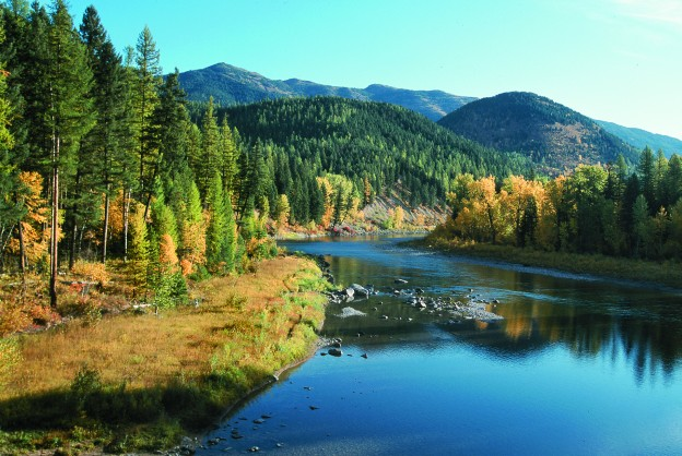 Fall: Montana's Bashful Season