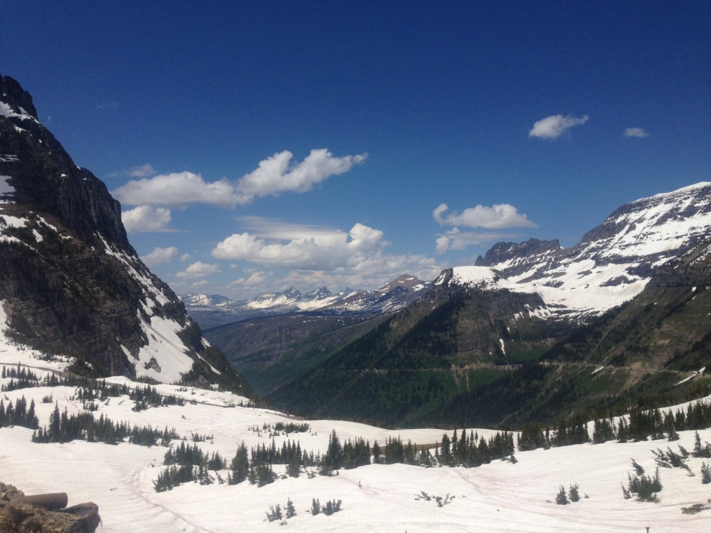 The view from Logan Pass.
