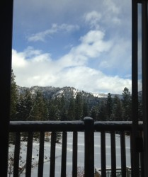 The view from one of the bedrooms in the Ponderosa Cabin.