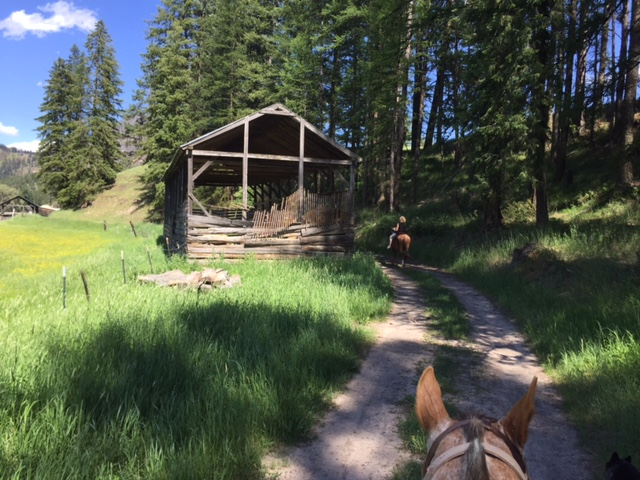 Our two-hour trail ride went through meadows, along a river and around a mountain lake.