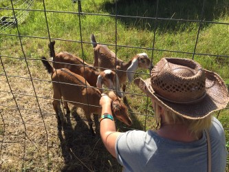 The goats and I quickly became BFFs.