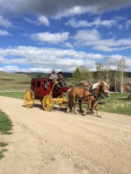 We caught a ride to the barn dance in this old-fashioned stage coach.