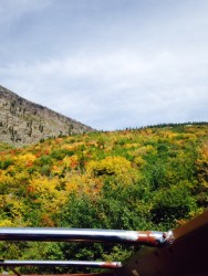 Fall colors from a red bus tour