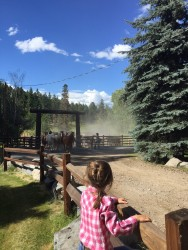 Watching the horses come in at Flathead Lake Lodge.
