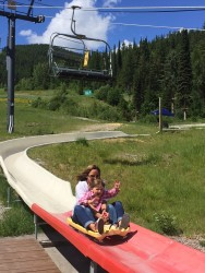 Mayhem and her mama cruising down the slide.