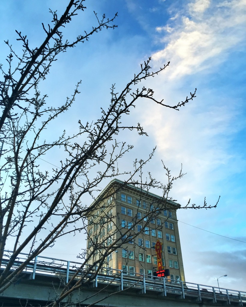 A spring-like peek at The Wilma in downtown Missoula.
