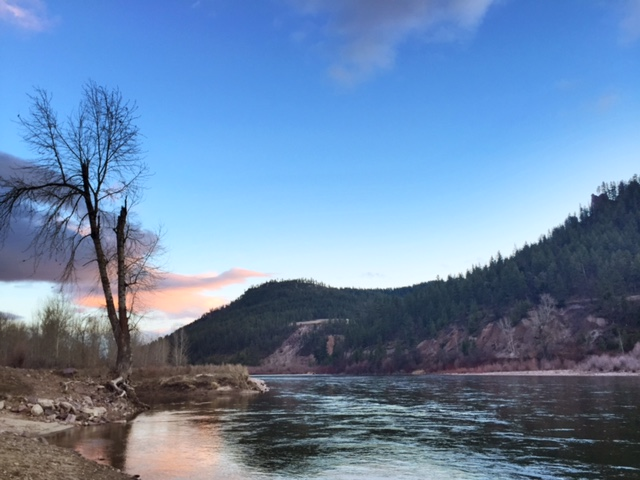 The Clark Fork River was the perfect backdrop to the early night sky.