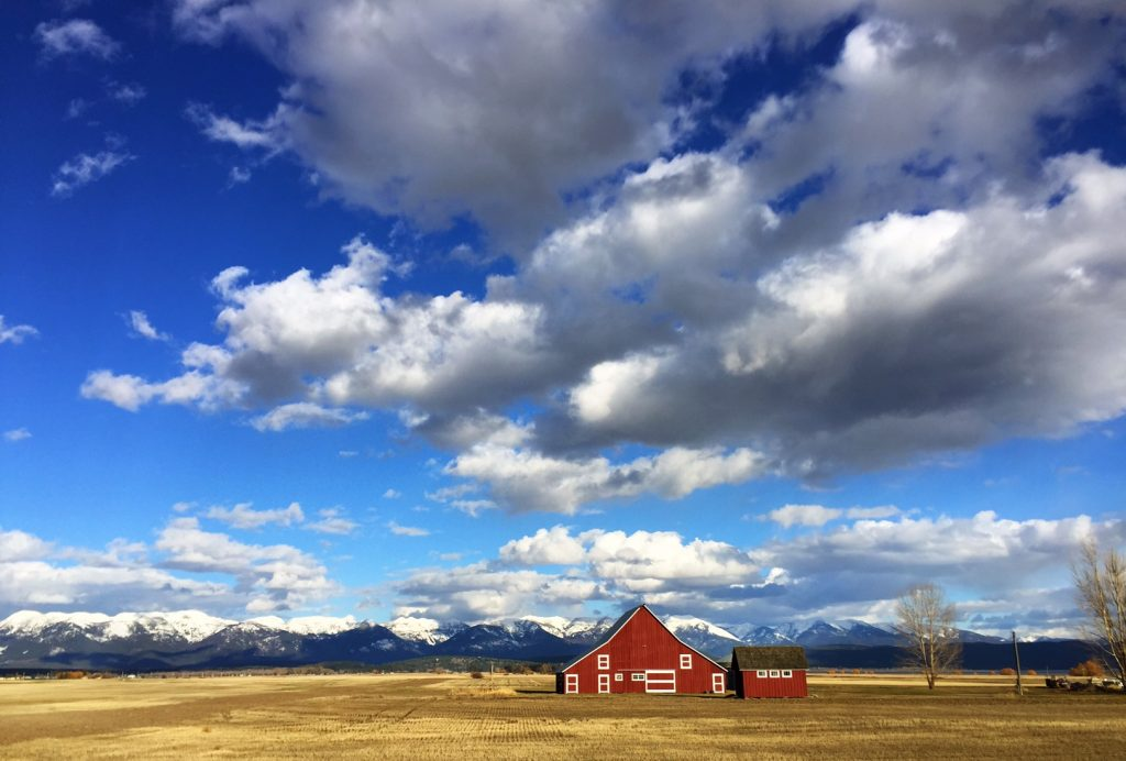 When traveling through Montana, you're more than likely to encounter several barns along the way. In a way, they almost become part of the landscape while still having their own stories to tell.