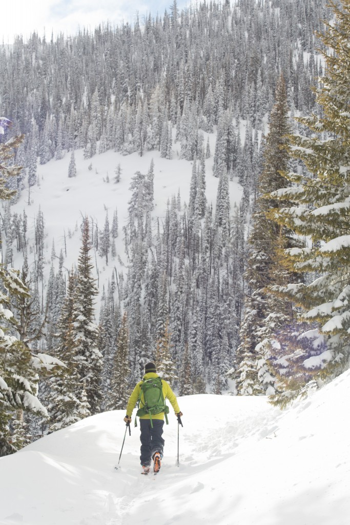 Skiing on trails in the backcountry of the Swan Mountains. Photo: WME