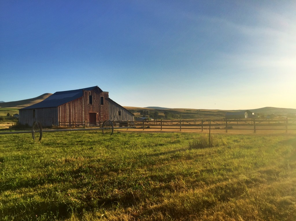 To me, farms and ranches are Montana.