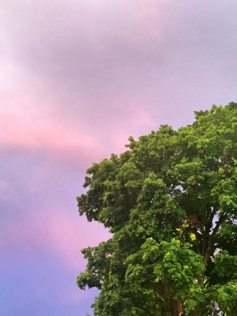 A Missoula sunset.