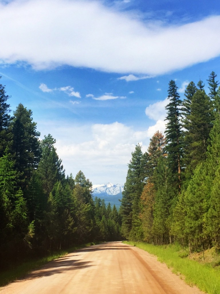 Driving Montana's country roads is something I highly recommend when visiting Big Sky Country...because of views like this.