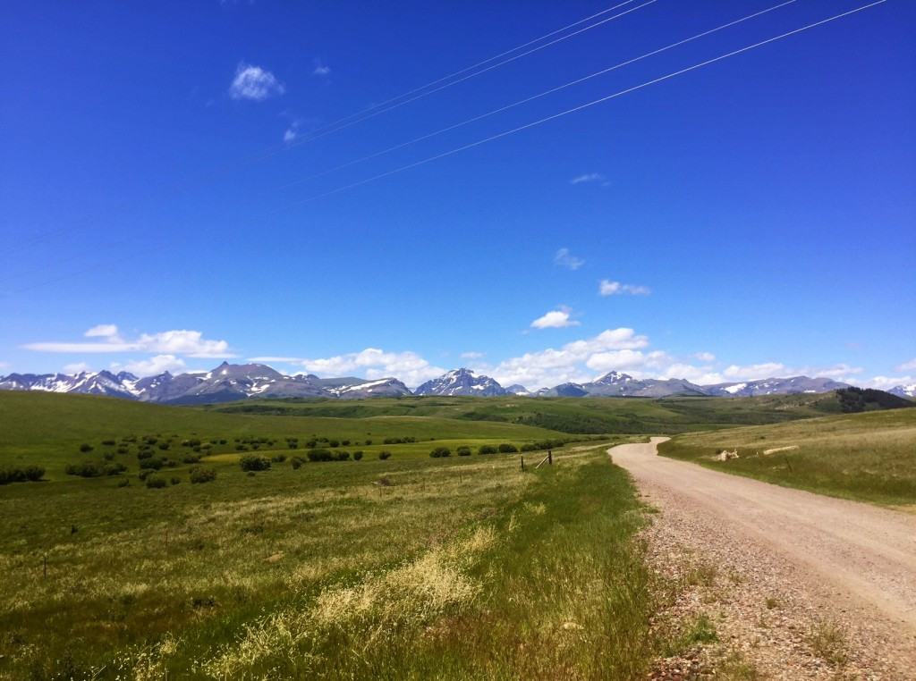 This view is just off Highway 2 between East Glacier Park and Browning.