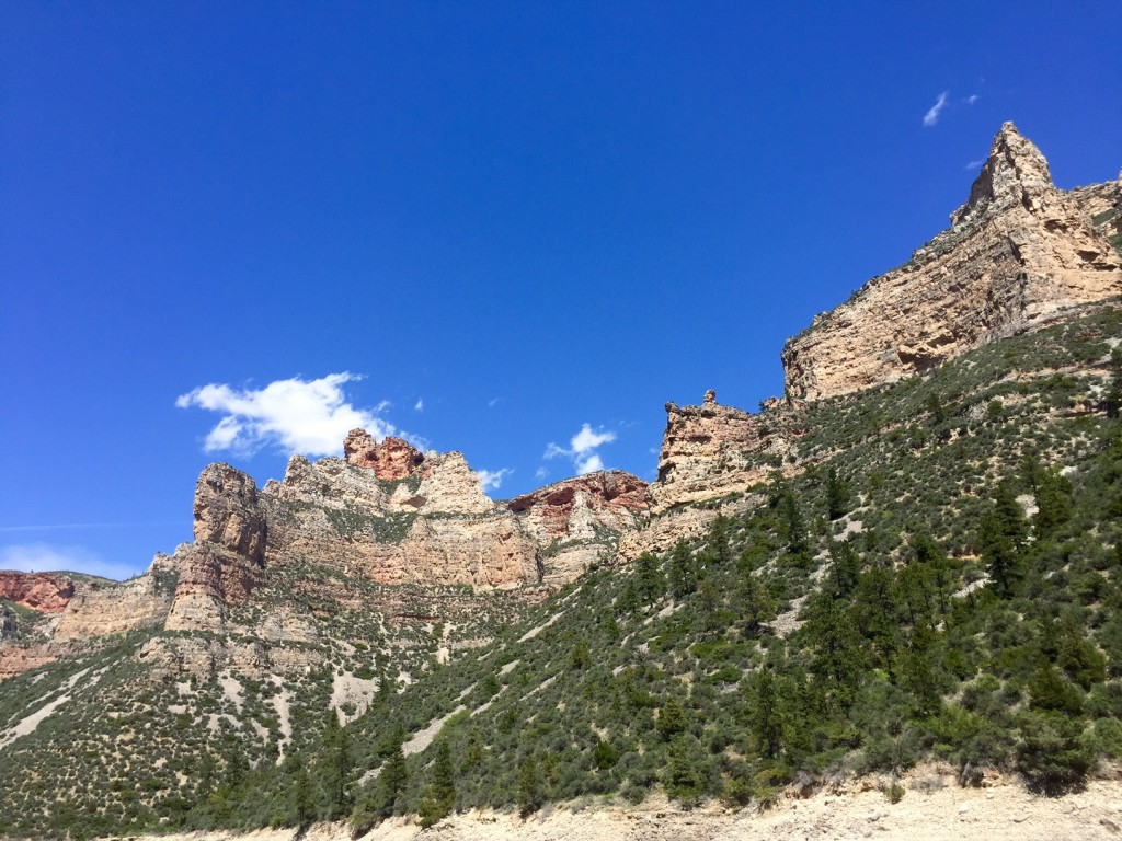 Visiting Bighorn Canyon in the southeast corner of Montana was the highlight of June.