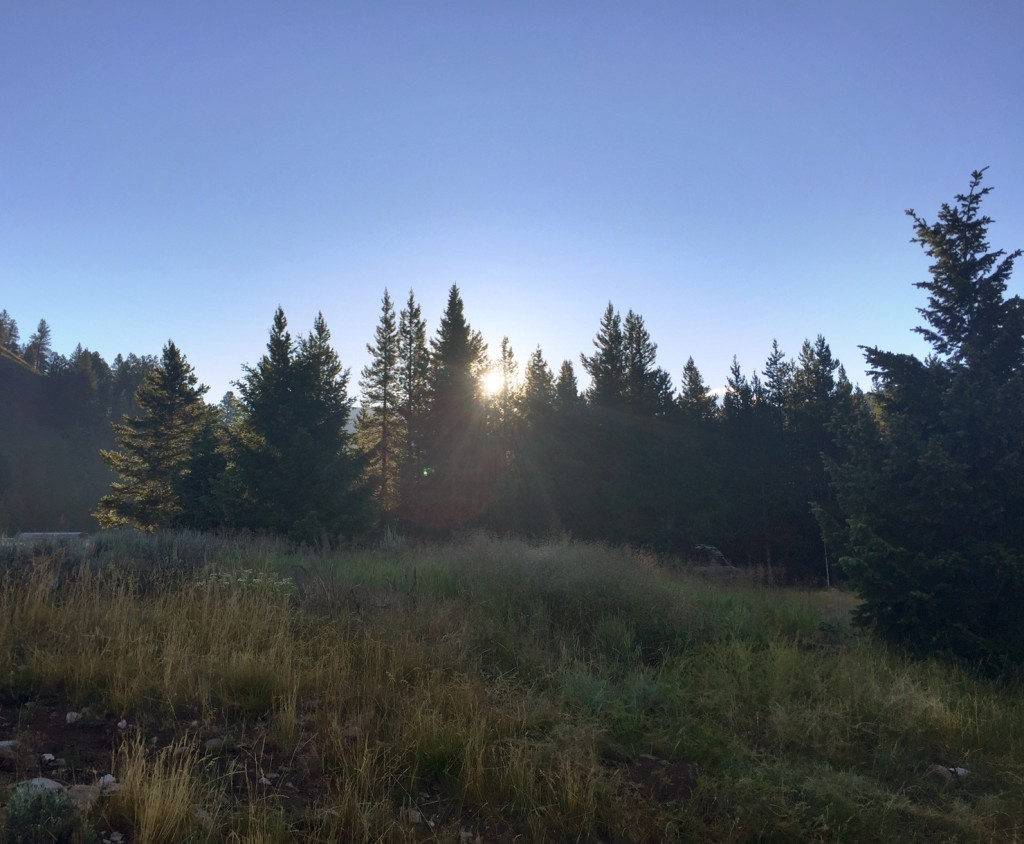 Morning light at Benchmark Trailhead.