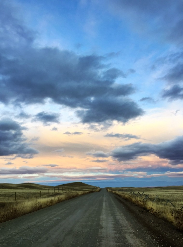 The landscape seemed endless, even for this local Montana girl.