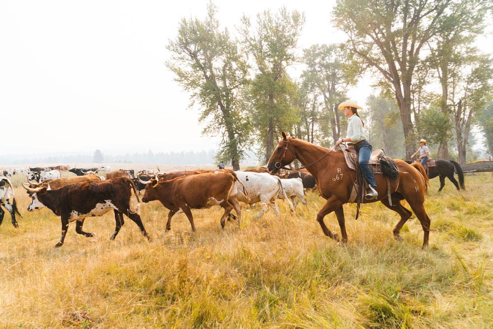 Western Montana Wild West Adventures Part 2