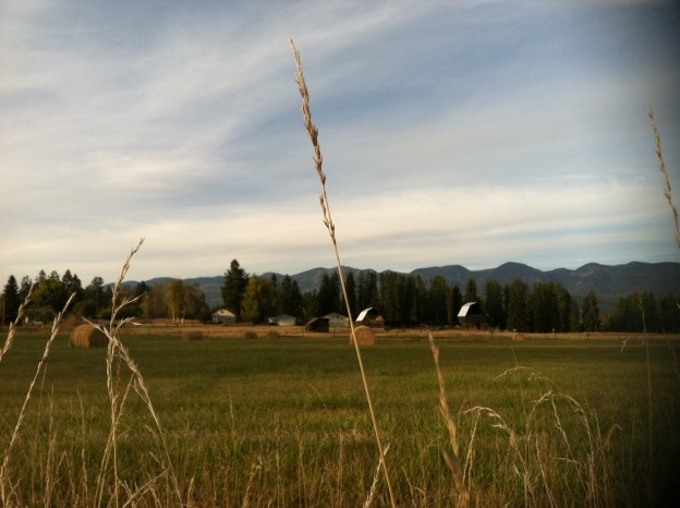 Fall: A Tale of Montana Truth