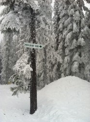 My favorite run at Lookout Pass, solely because its name.