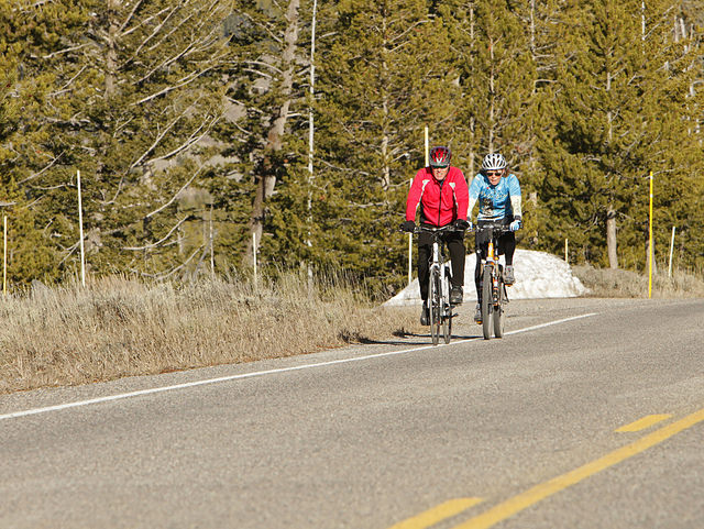 Bikers on the west entrance road in Yellowstone National Park. Photo courtesy of YNP.