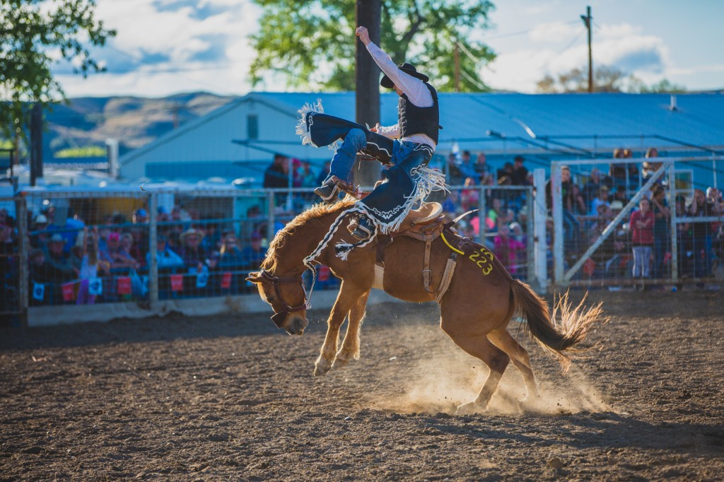 A cowboy is throne from the saddle. Photo: Andy Austin