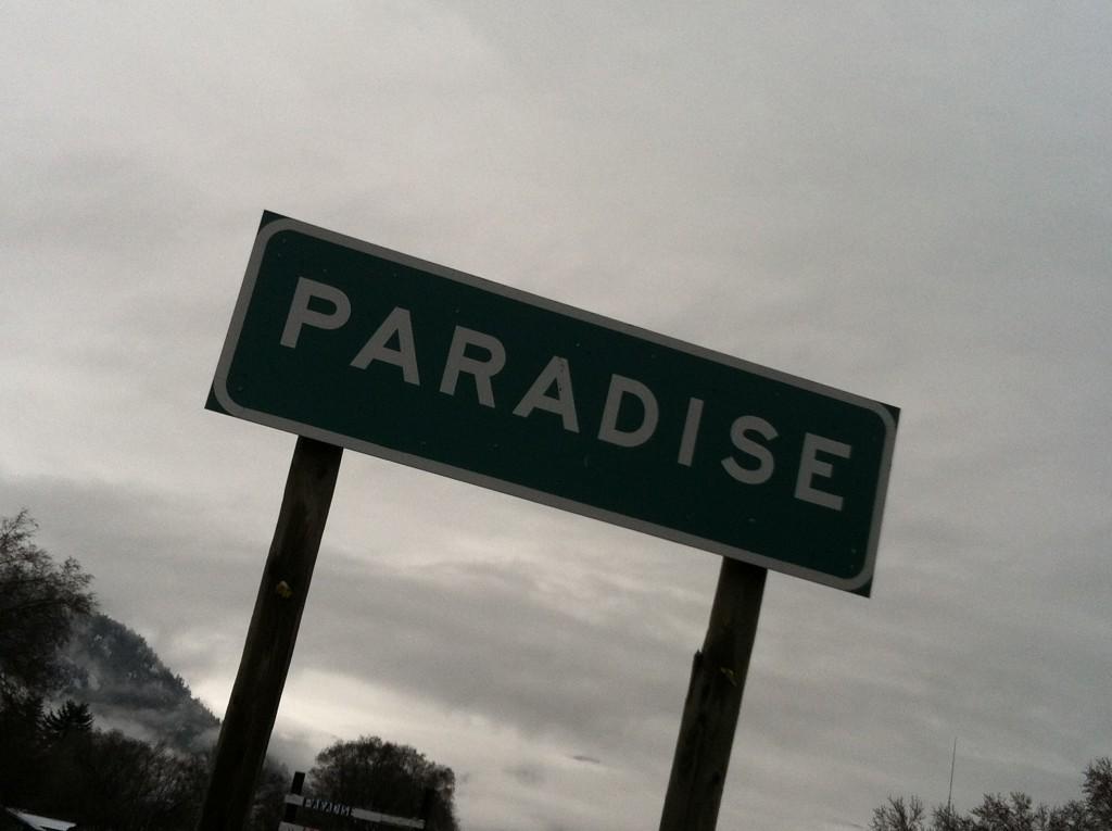Oh hey, Paradise.