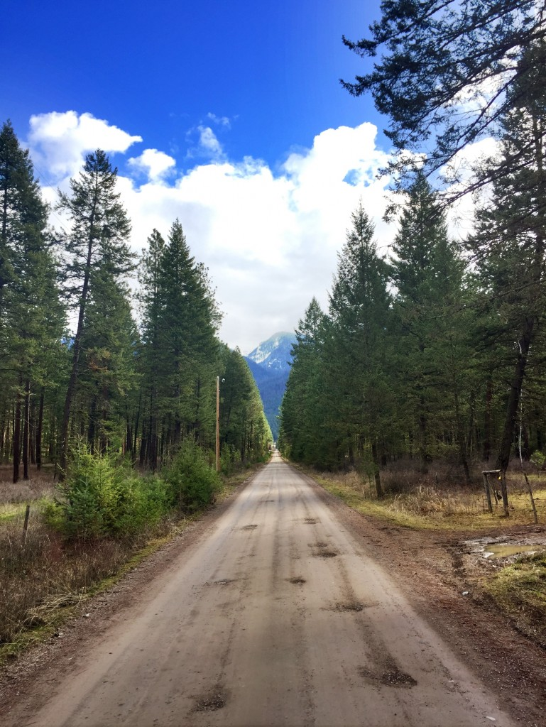 Pro Montana tip: if you see a backroad, take it.