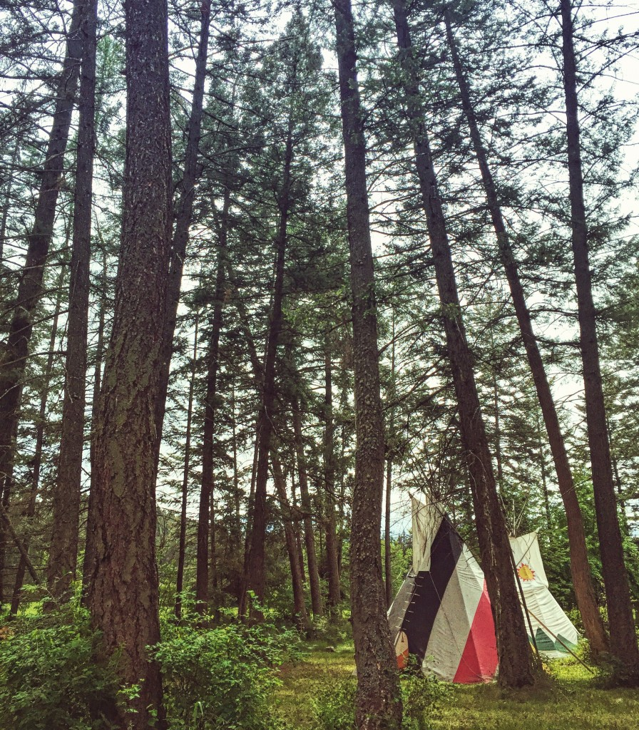 A tipi in the woods at Flathead Lake Lodge.