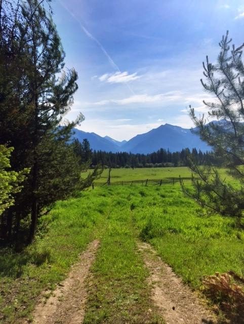 A Summer Road Trip: Clearwater Junction to Polebridge, Montana