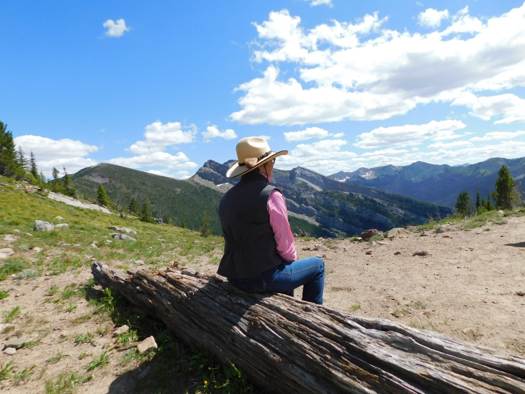 Janet, an avid horsewoman and perhaps one of the loveliest gals ever, checking out the view of the Flathead Alps from White River Pass.