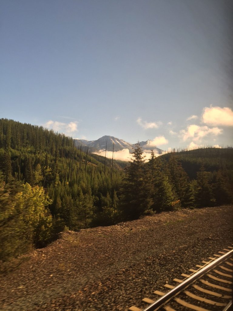 Something I learned on this trip: it's really hard to get good photos from the inside of a train car looking out.