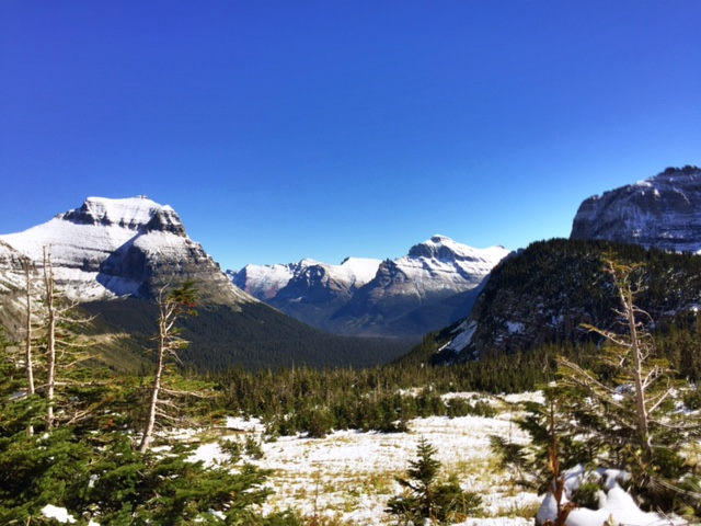 The view from Logan Pass. (I love this view, but it's so pretty it almost looks fake. But it's not, I promise.)