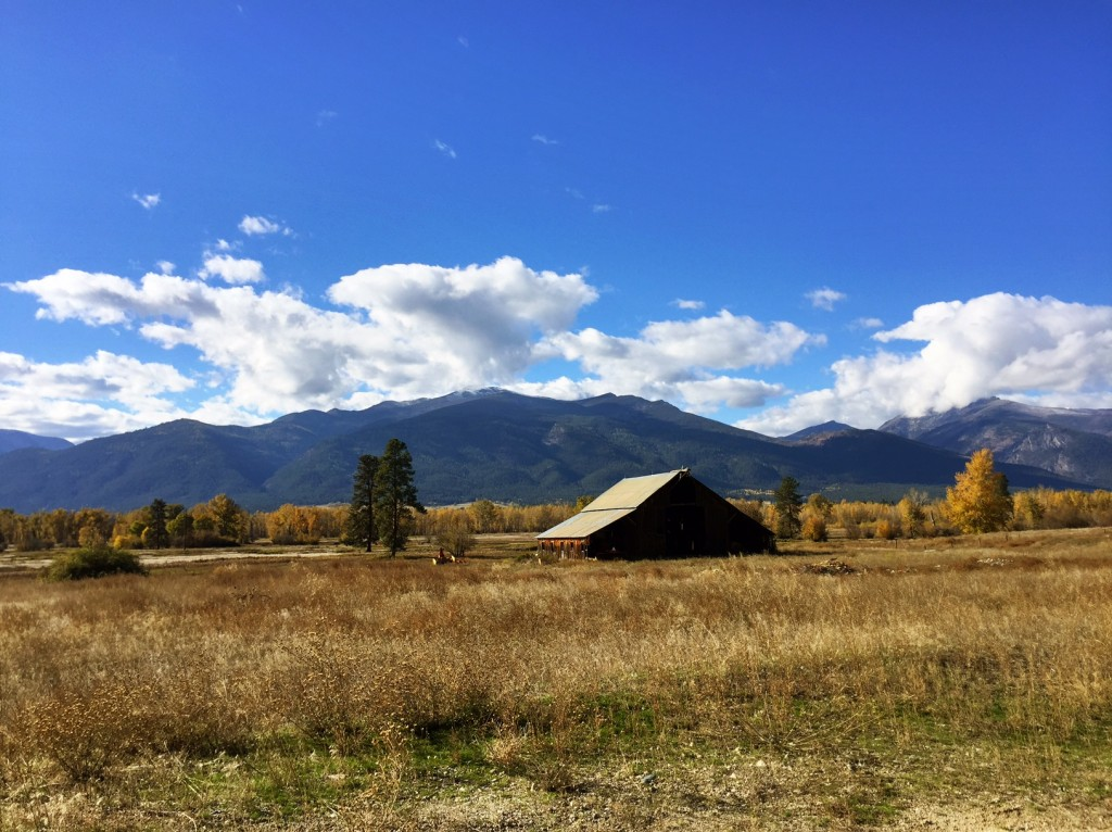 No matter how many times I see a barn in Montana's countryside, it warms my heart.