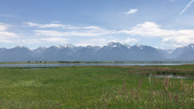 Picture Perfect Spring Road Trip: Charlo + Ninepipe National Wildlife Refuge