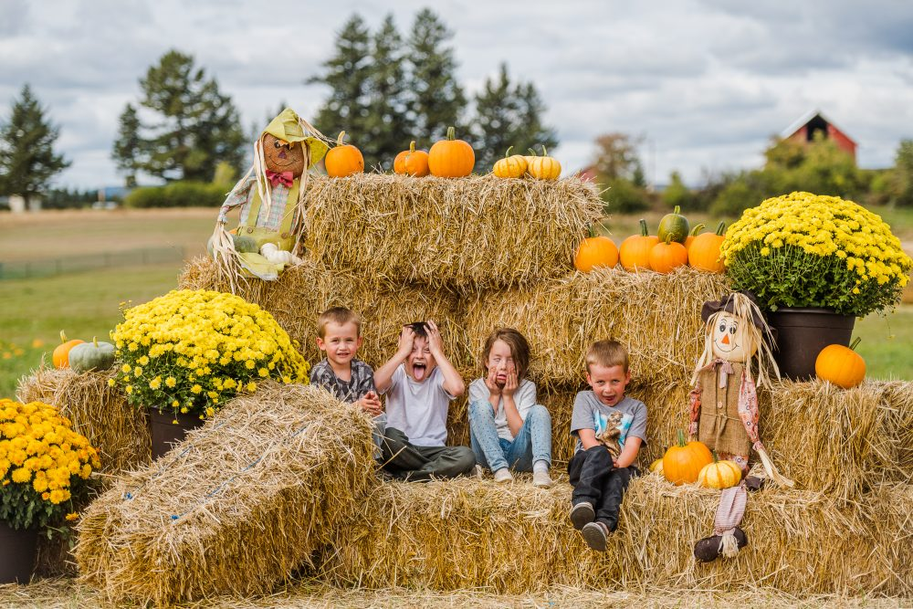 Fall Fun, Frights and Flavors in Western Montana